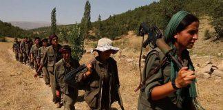 cinema curdo